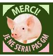 Le porc génétiquement modifié est mis en veilleuse