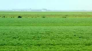 Capsule 1 – Poursuite par l'UPA contre un agriculteur biologique