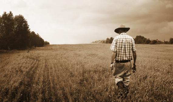 Fonds de défense agricole de l'Union paysanne