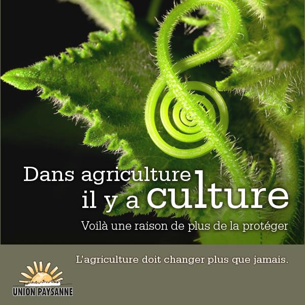 Dans Agriculture il y a Culture