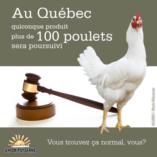 100 poulets
