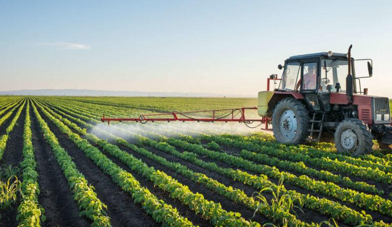 Des études le confirment: les insecticides néonicotinoïdes sont inutiles.