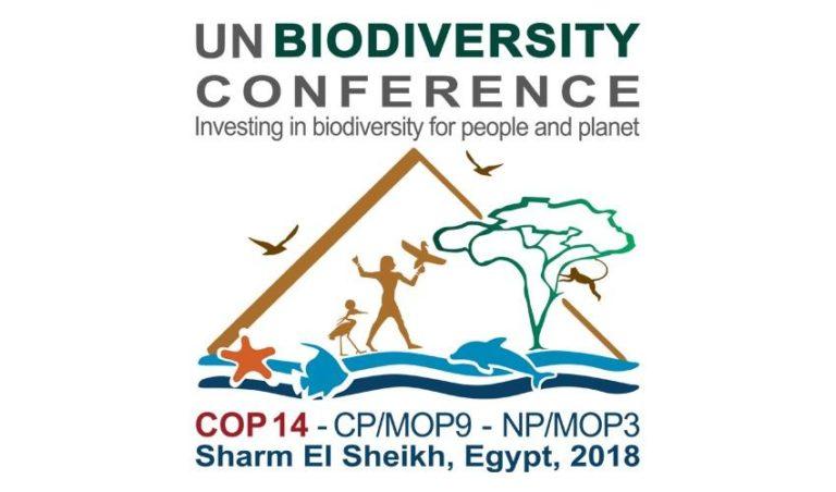 COP 14 en Égypte : Les paysan.ne.s demandent un moratoire sur les technologies non-testées des corporations qui menacent la biodiversité, la sécurité alimentaire et les droits paysans