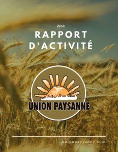 thumbnail of Rapport d'activité 2018- compresse