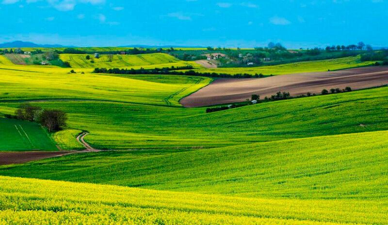 Terres agricoles à disposition pour un projet collectif